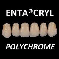 enta®cryl polychrome